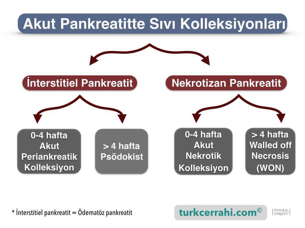Akut pankreatitte sıvı kolleksiyonlari ve psödokist (Atlanta sınıflaması)