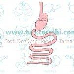 Bilroth I gastrektomi