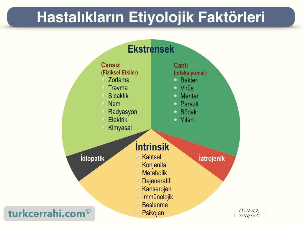 Etiyolojik faktörler, hastalıkların etiyolojisi