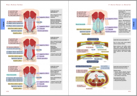 Genel Cerrahi Kitabı Örnek Sayfa - 2 (A4)