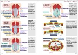 Genel Cerrahi Kitabı Örnek Sayfa - 2 (A5)
