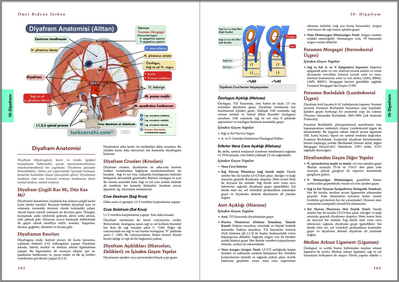 Genel Cerrahi Kitabı Örnek Sayfa - 3 (A4)