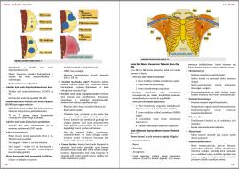 Genel Cerrahi Kitabı Örnek Sayfa - 4 (A5)