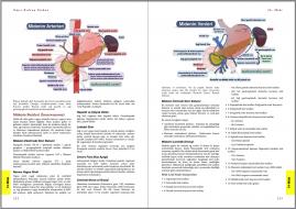 Genel Cerrahi Kitabı Örnek Sayfa - 5 (A4)