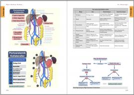 Genel Cerrahi Kitabı Örnek Sayfa - 7 (A4)