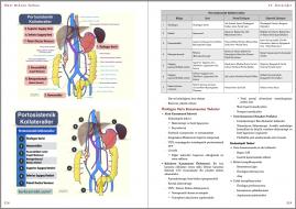 Genel Cerrahi Kitabı Örnek Sayfa - 7 (A5)